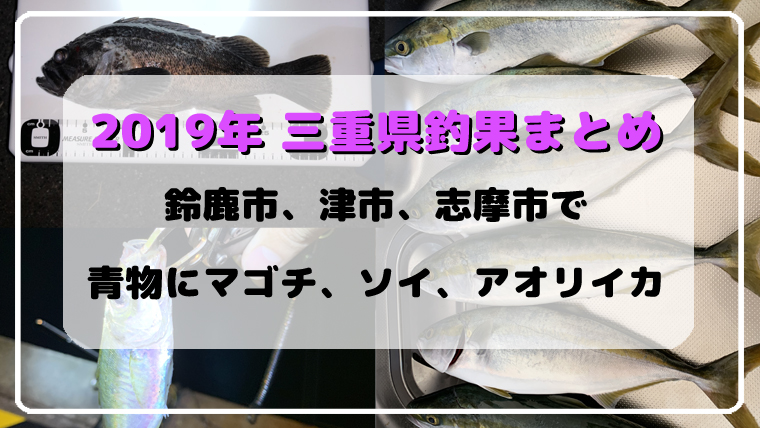 2019年三重県釣果まとめ
