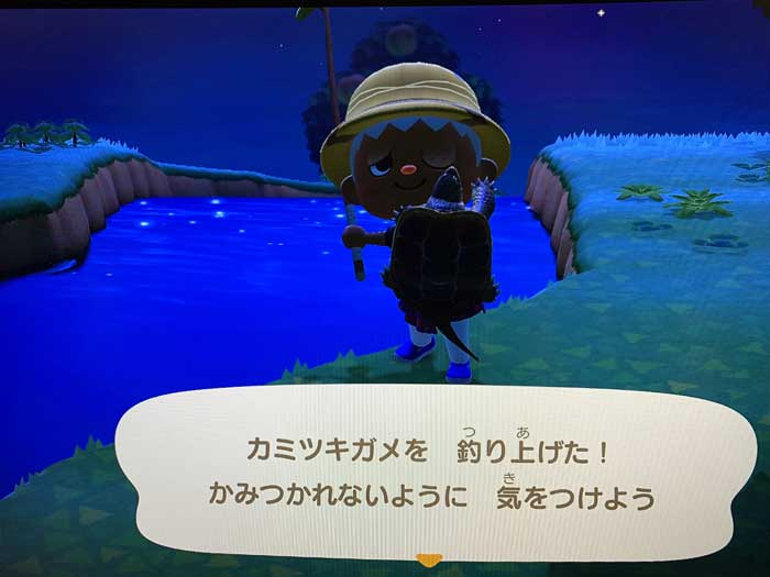 あつ森:釣り上げたカミツキガメ