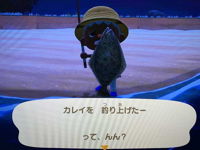 あつ森:釣り上げたカレイ!?