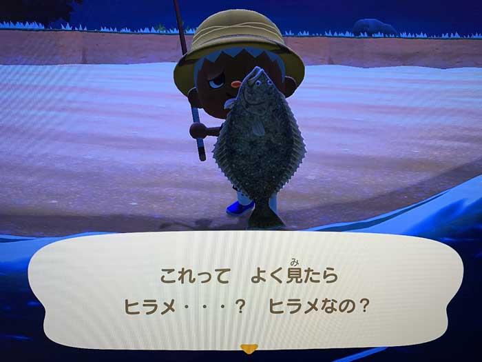 あつ森:釣り上げたヒラメ